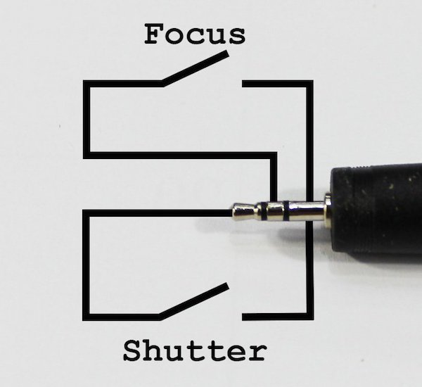 Shutter-Focus-Connections-100KB.jpg
