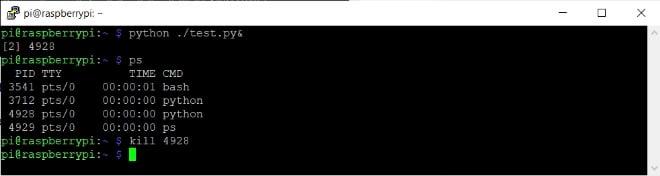 intermediate_linux_commands_DH_MP_image3.jpg