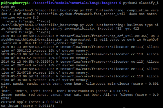 Python3 Classify_image.py