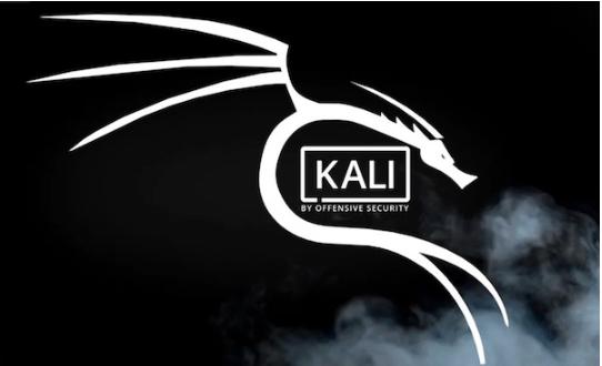 kali_linux_RPi4_EP_MP_image2.png