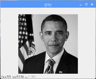 OpenCV Default Grayscale